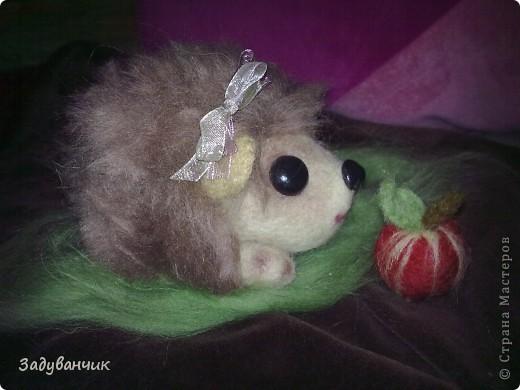 вот за 3 вечера свалялась малышка Пушинка)) фото 2