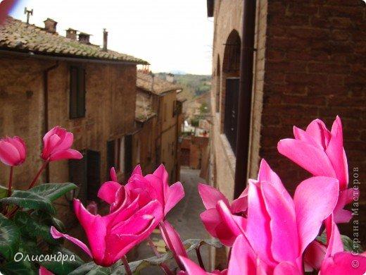 """Сиена- город в Италии... ,не похожий ни на один другой, который я когда-либо видела. Видимо, потому,что он такой необычный, я  и """"влюбилась"""" ... Возможно, мои фотографии не смогут передать  атмосферу города, но если  путешествуя по Италии, у Вас будет возможность  попасть в него, не отказывайтесь от этого...,несмотря на то ,что посещение Сиены, часто, считается дополнительной экскурсией. фото 1"""
