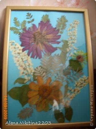 Увидела как-то по телевизору составление картин из сухих цветов, решила тоже попробовать. фото 4