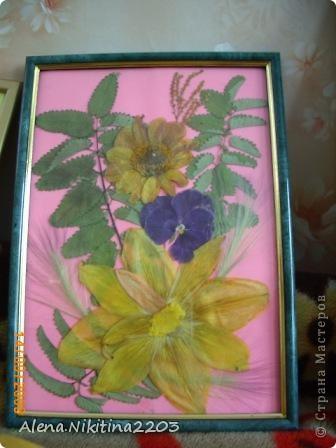 Увидела как-то по телевизору составление картин из сухих цветов, решила тоже попробовать. фото 2