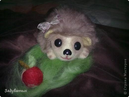 вот за 3 вечера свалялась малышка Пушинка)) фото 3