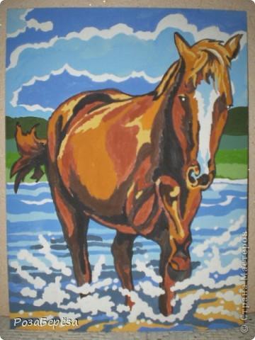 Лошадь. Ей подарили набор готовых эскизов, их надо было разукрасить. фото 1
