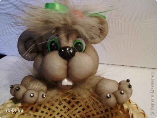 Как и обещала -показываю ,как делалась голова для львёнка. фото 8