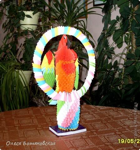 Вот такой попугай получился у нас с детьми!