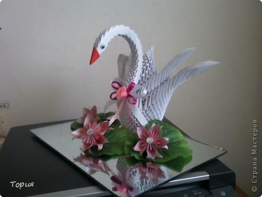 Лебедушка фото 1