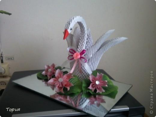 Лебедушка фото 2