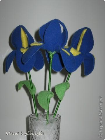 Мои любимые цветы. фото 1