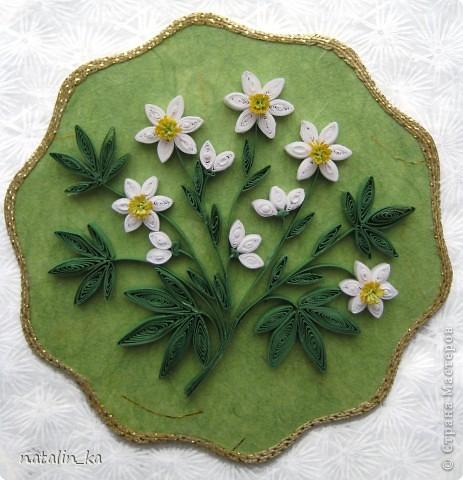 Дорогие мастерицы! Приглашаю вас заглянуть в мой весенний лес, где, поляны покрыты разными белоснежными коврами, но... ковры эти не из снега, а из маленьких белых цветочков.  фото 2