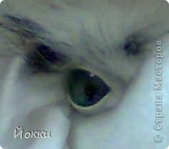 вот глаз, стандарт: картон+иск.кожа+пайетка+стекло фото 1