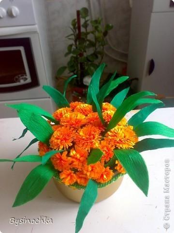 Сделала в подарок соседке на День Рождение поляночку цветов.Первый раз пробовала квиллинг-так понравилось крутить цветочки! фото 1