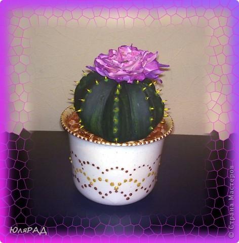 Вот какой цветущий кактус у меня получился из солёного теста. Иголки из зубочисток, а цветок из пластики (сверху покрашен акриловыми красками)))) Горшок покупной, только немного приукрасила. В горшочке есть камешки их я тоже сделала из солёного теста, а потом покрасила медным оттенком))) фото 3