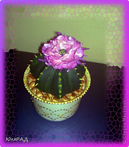 Вот какой цветущий кактус у меня получился из солёного теста. Иголки из зубочисток, а цветок из пластики (сверху покрашен акриловыми красками)))) Горшок покупной, только немного приукрасила. В горшочке есть камешки их я тоже сделала из солёного теста, а потом покрасила медным оттенком))) фото 5