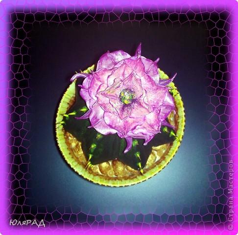 Вот какой цветущий кактус у меня получился из солёного теста. Иголки из зубочисток, а цветок из пластики (сверху покрашен акриловыми красками)))) Горшок покупной, только немного приукрасила. В горшочке есть камешки их я тоже сделала из солёного теста, а потом покрасила медным оттенком))) фото 2