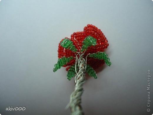 Вот такие розочки у меня получились по этому МК http://www.liveinternet.ru/users/3557225/post122684900/ . Я решила сделать свой мини-МК. фото 13