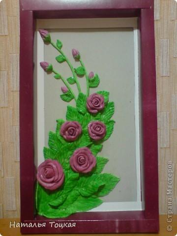 И снова розы фото 1