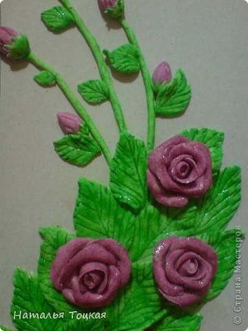 И снова розы фото 3