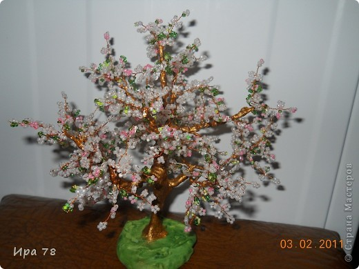 Цветущие сакура и яблонька фото 2