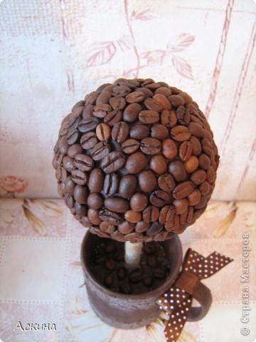 Это мое второе кофейное дерево (первое можете посмотреть тут http://stranamasterov.ru/node/125602). Высота деревца 28 см, диаметр кроны 9 см. Сделала его в подарок зятю. Он очень любит кофе,чай практически не пьет.  фото 2