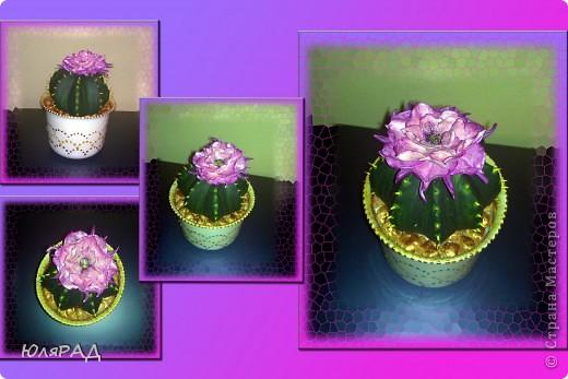 Вот какой цветущий кактус у меня получился из солёного теста. Иголки из зубочисток, а цветок из пластики (сверху покрашен акриловыми красками)))) Горшок покупной, только немного приукрасила. В горшочке есть камешки их я тоже сделала из солёного теста, а потом покрасила медным оттенком))) фото 1