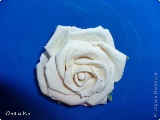 Наконец я доказала себе, что из теста могут получиться почти живые цветы... фото 3