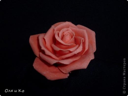 Наконец я доказала себе, что из теста могут получиться почти живые цветы... фото 1