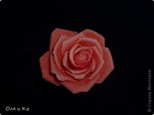 Наконец я доказала себе, что из теста могут получиться почти живые цветы... фото 2