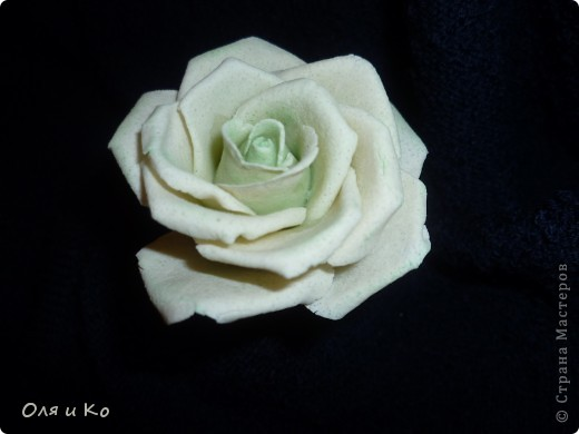 Хотела слепить зеленовато-белую розу. Вот что вышло. Посоветуйте, зеленого еще надо добавить или так оставить, а может зелени наоборот слишком много. Как быть? Ох, как я всегда мучаюсь с покраской((( Помогите... фото 2