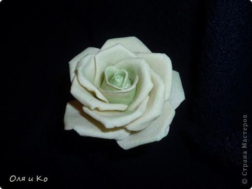 Хотела слепить зеленовато-белую розу. Вот что вышло. Посоветуйте, зеленого еще надо добавить или так оставить, а может зелени наоборот слишком много. Как быть? Ох, как я всегда мучаюсь с покраской((( Помогите... фото 3