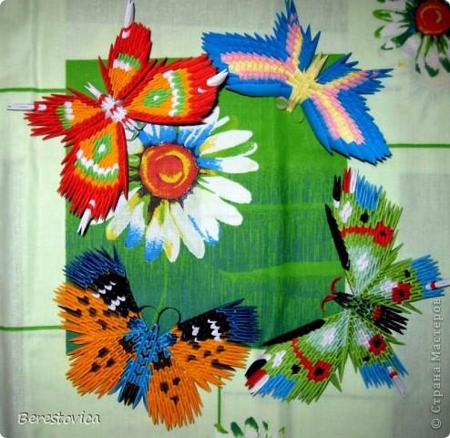 Бабочки из модулей фото 3