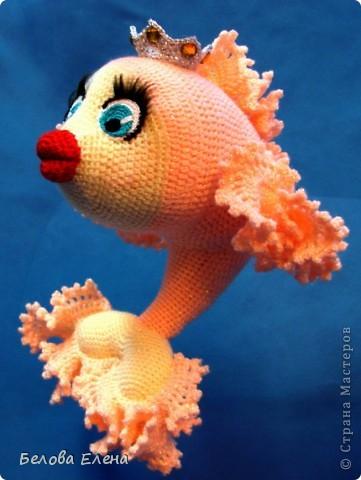 Золотая рыбка. фото 3