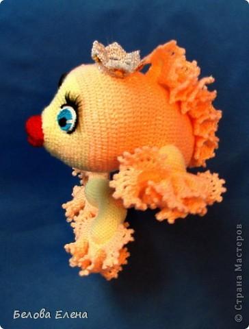 Золотая рыбка. фото 5