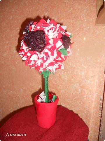 Мой дебют. Розы засушенные, покрытые лаком. фото 1