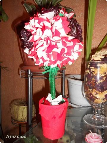 Мой дебют. Розы засушенные, покрытые лаком. фото 3