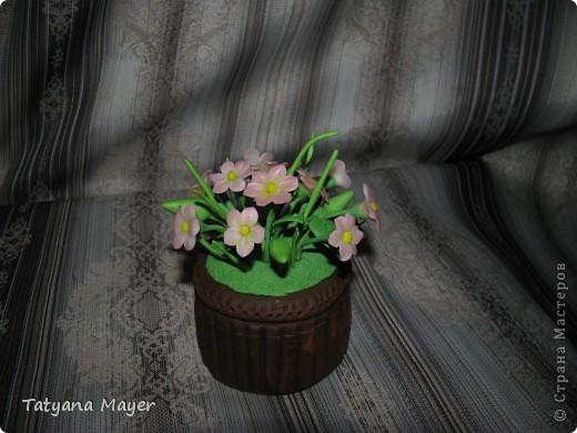 Вазончик с цветами из ХФ фото 3