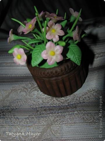 Вазончик с цветами из ХФ фото 4