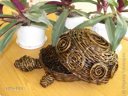 Идейка черепахи с чешского сайта, но украсила по своему. Вот что получилось. фото 2