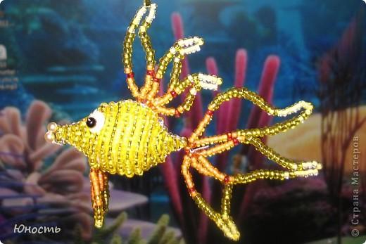 Вот такая рыбка наплелась фото 2