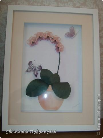 Наконец-то и у меня есть орхидеи.По мотивам работы Ольги К. Работа в рамке фото 1
