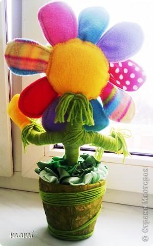 Всем, кто зашёл в гости хорошего настроения. Это Цветик, сшит на скорую руку ко Дню рождения, использовала остатки флиса, горшочек, нить шерстяную и ленты!!! фото 7