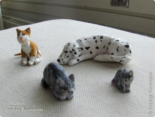 наши животные(тишка, гейция, сэрик) в миниатюре. первые попытки фото 1