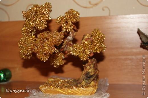 Золотой бонсай фото 2