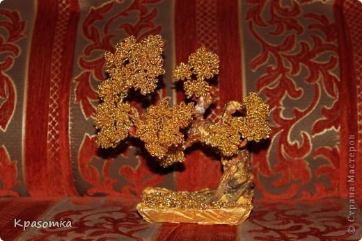 Золотой бонсай фото 1