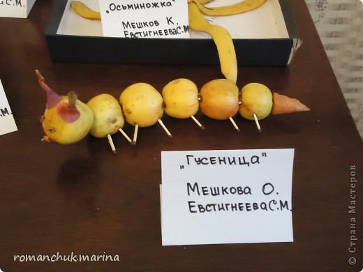 Вот такие интересные поделки сделали дети вместе с воспитателями на праздник осени. фото 6