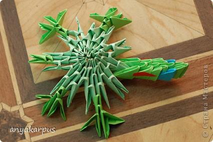 Моя дочь Катя (ей скоро 9 лет) увлеклась модульным оригами и вот ее дебют собственной идеи - черепашка (дочь не нашла ничего подобного на сайте и ей очень хотелось увидеть здесь свою поделку) фото 2