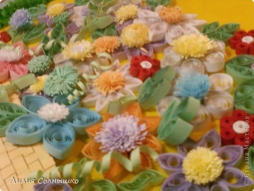 Цветы фото 2