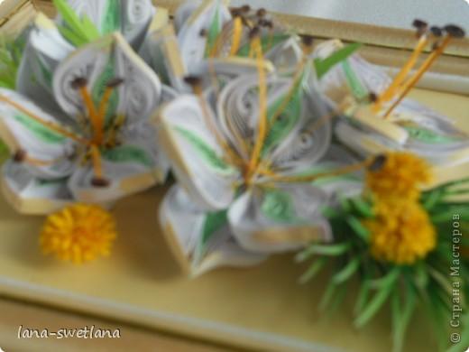 подсела я на эти замечательные цветочки... фото 2
