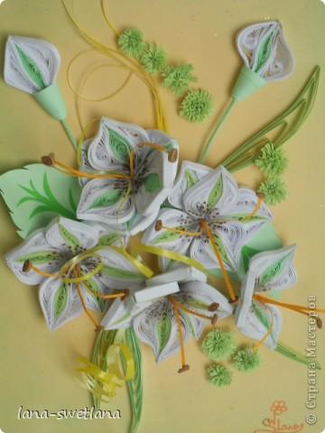 подсела я на эти замечательные цветочки... фото 5