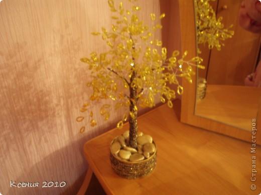 золотая  осень фото 3