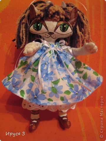 Кошечка Анютка фото 1