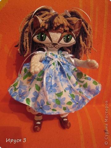 Кошечка Анютка фото 12